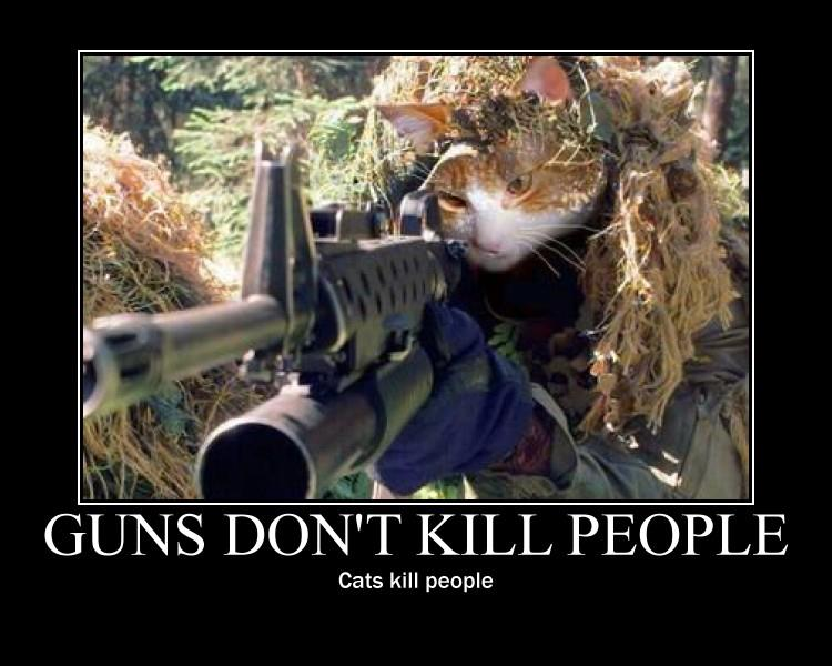 cats kill people
