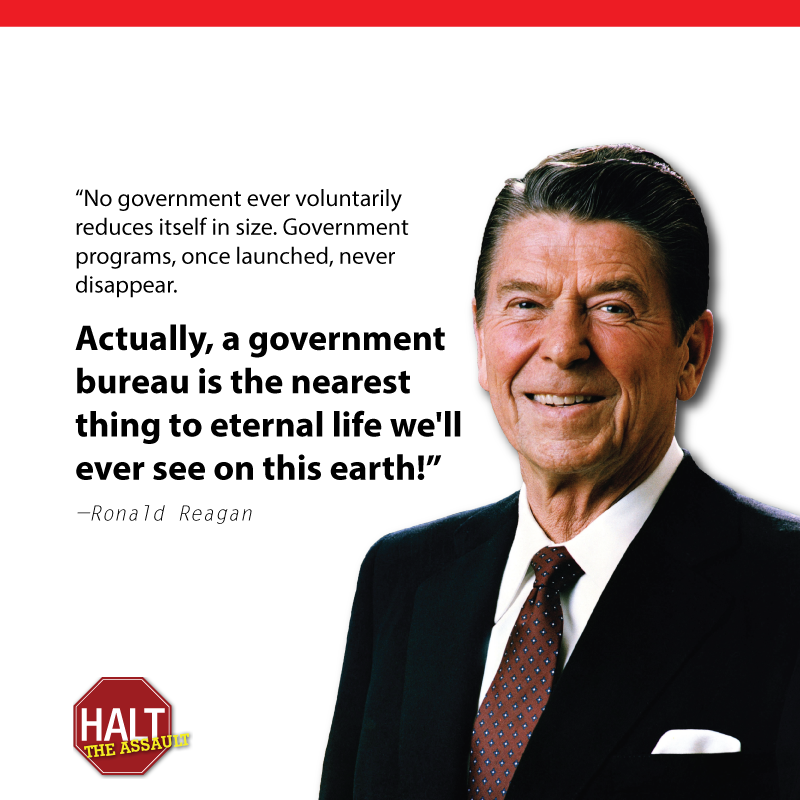 reagan government