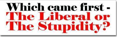 liberal or stupidity