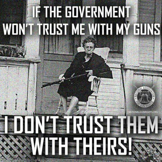 trust government with guns