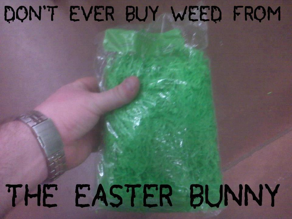 weed from the easter bunny