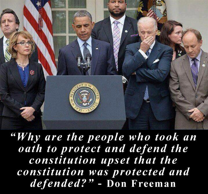 constitution defended