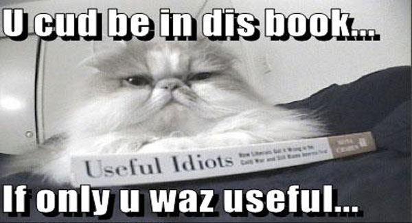 useful-idiot-cat