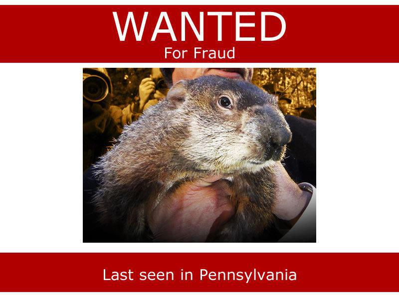 groundhog fraud