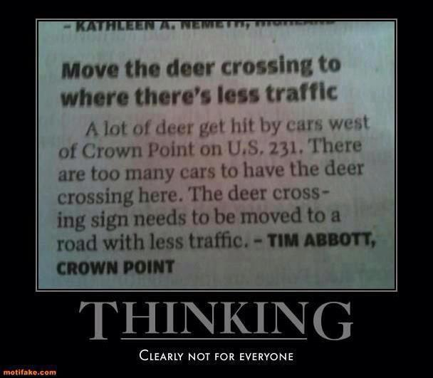 move deer crossing