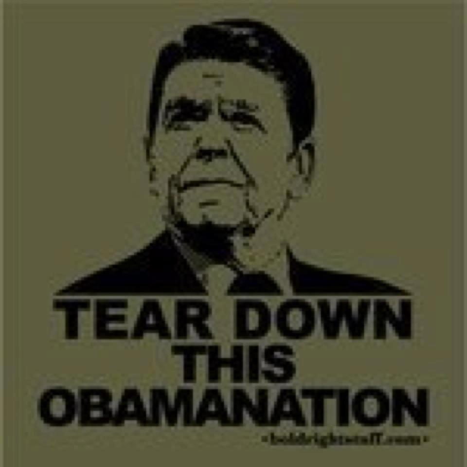 tear down this obamanation